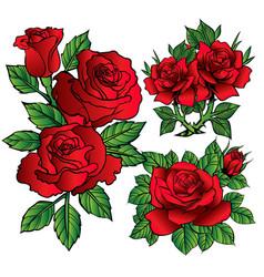 Rose flower red cartoon vector