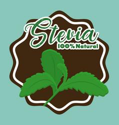 Stevia concept design vector