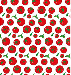 tomato pattern background vector image