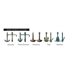 types boat anchors vector image
