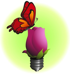 eco bulb flower with butterfly vector image
