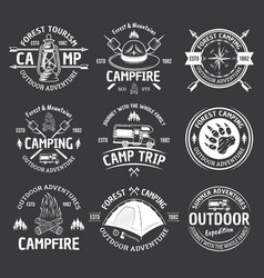 camping vintage white emblems on dark vector image