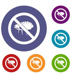 no flea sign icons set vector image