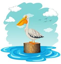 Pelican standing on log vector