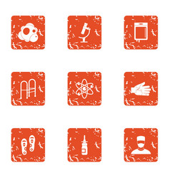 Produce the disease icons set grunge style vector