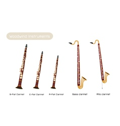 Various Kind of Clarinets vector image