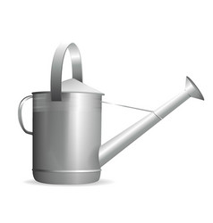 watering can in the garden on a white background vector image