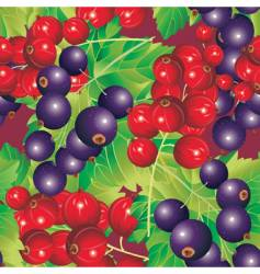berry fruit background vector image