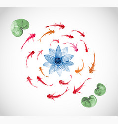 little red and orange fishes and blue lotus vector image