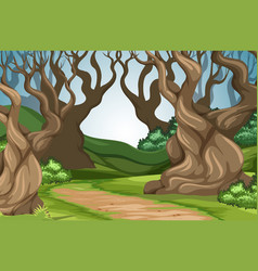road in the forest vector image