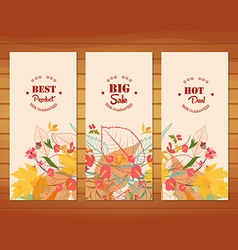 Three autumn banners with stylized autumn leaves vector