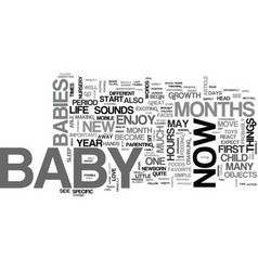 Baby s first year what to expect text word cloud vector
