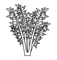 Black silhouette of carrot plant vector