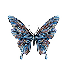 Ethnic butterfly vector