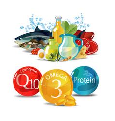 Fundamentals of healthy eating vector