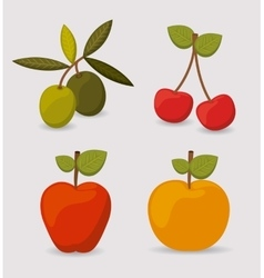 healthy food design vector image