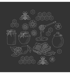 honey set vector image