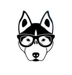 portrait of husky dog with glasses vector image