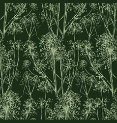 Seamless pattern sketches wild umbellate vector