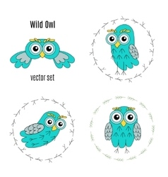 Set owl birds isolated on white background vector image