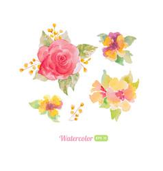 set watercolor floral elements for decoration vector image