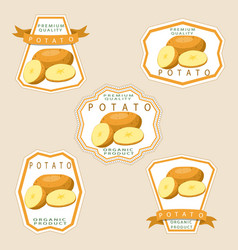 The theme potato vector