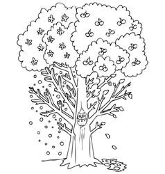 season coloring fruit tree vector image