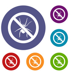 no spider sign icons set vector image vector image