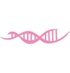 Dna strand pink vector