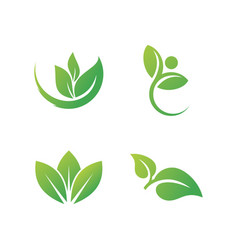 Green leaves and ecology logo vector