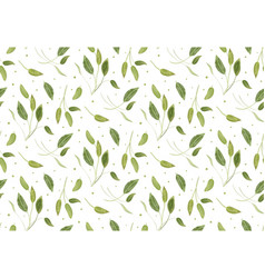 Seamless pattern with sage light green leaves vector