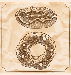 Two sweet vintage donuts with sprinkles frosting vector