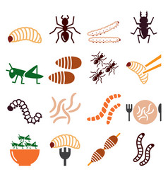 edible worms and insects icons set vector image