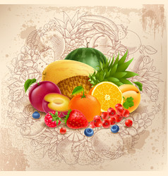 fruit and berries round design vector image