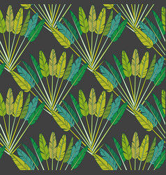 green tropical palm leaves and branches botanical vector image