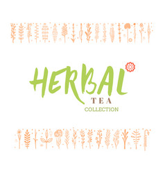 herbal tea collection badge design sticker vector image vector image