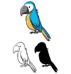 Set parrot cartoon vector