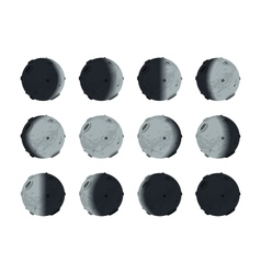 the whole cycle moon phases from new to full on vector image