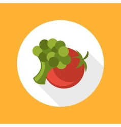 Tomato with broccoli icon vector