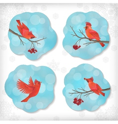 Winter Christmas Sticker Birds Rowan Tree Branches vector