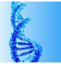 DNA helix background vector image