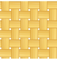 woven straw vector image