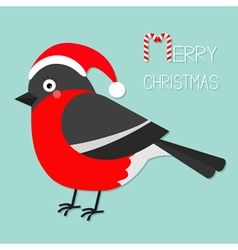 Bullfinch winter red feather bird Santa hat Merry vector