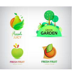 set of organic bio eco and nature food vector image
