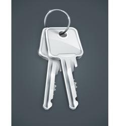 Sheaf of silver keys vector