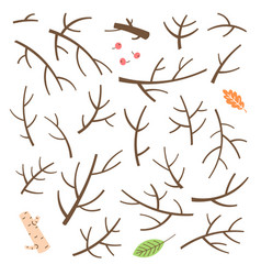 set of branches twigs sticks drawn in a simple vector image vector image