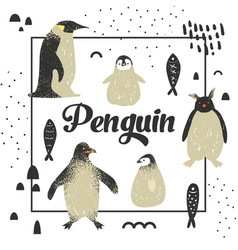 bashower design with cute penguins hand drawn vector image