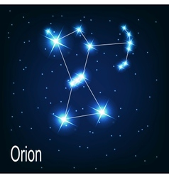 Constellation orion star in the night sky vector