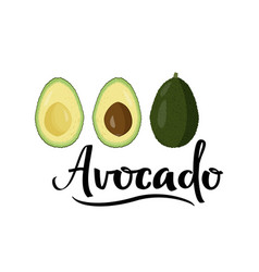 Fresh avocado with handwritten vector