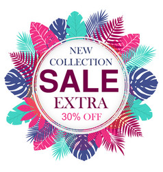 new collection sale banner design for promotion vector image